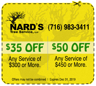 COUPON - $35 off any $300+ service / $50 off any $450+ service